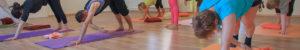 Hund Variation im Satya Yoga Zentrum in Besse